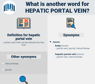 hepatic portal vein, synonym hepatic portal vein, another word for hepatic portal vein, words like hepatic portal vein, thesaurus hepatic portal vein