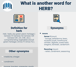herb, synonym herb, another word for herb, words like herb, thesaurus herb