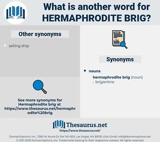 hermaphrodite brig, synonym hermaphrodite brig, another word for hermaphrodite brig, words like hermaphrodite brig, thesaurus hermaphrodite brig