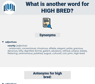 High-bred, synonym High-bred, another word for High-bred, words like High-bred, thesaurus High-bred