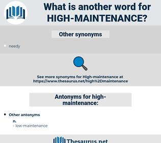 high-maintenance, synonym high-maintenance, another word for high-maintenance, words like high-maintenance, thesaurus high-maintenance