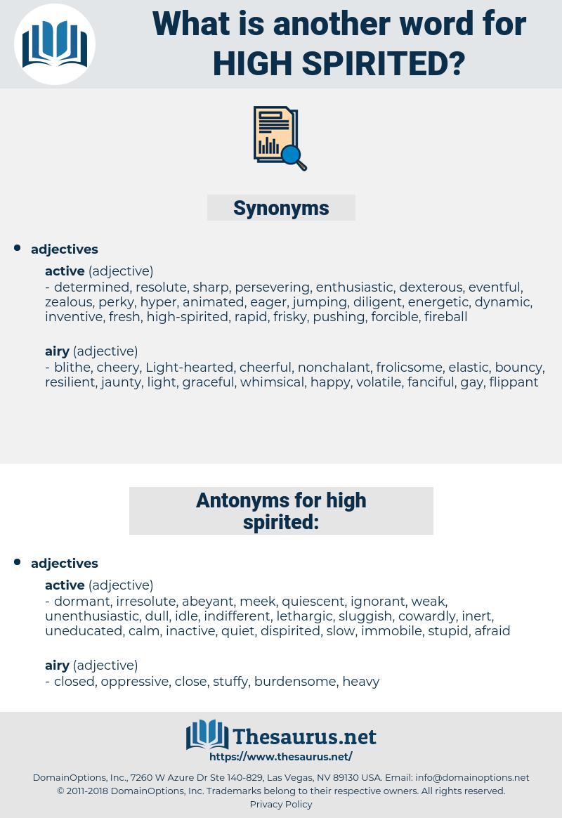 high-spirited, synonym high-spirited, another word for high-spirited, words like high-spirited, thesaurus high-spirited