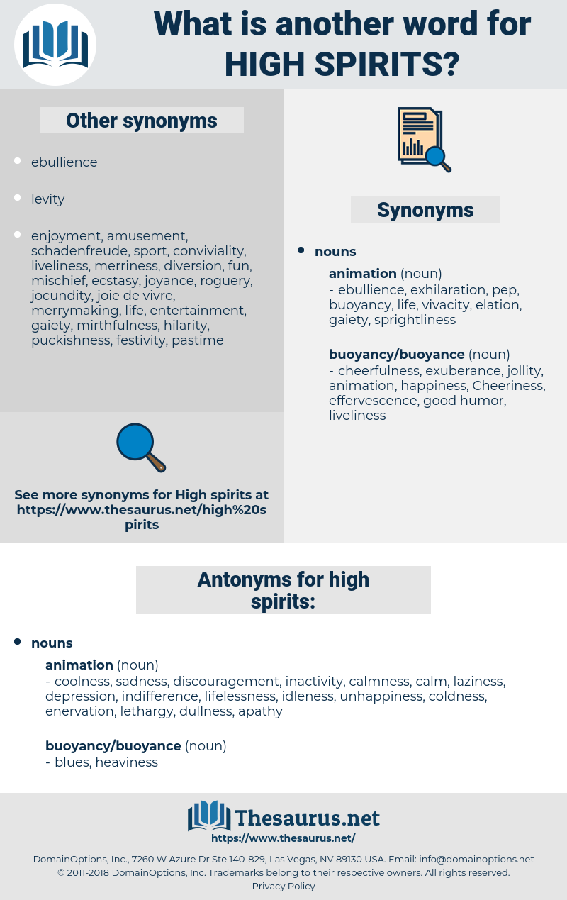 high spirits, synonym high spirits, another word for high spirits, words like high spirits, thesaurus high spirits