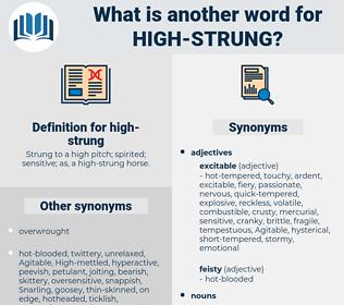high-strung, synonym high-strung, another word for high-strung, words like high-strung, thesaurus high-strung