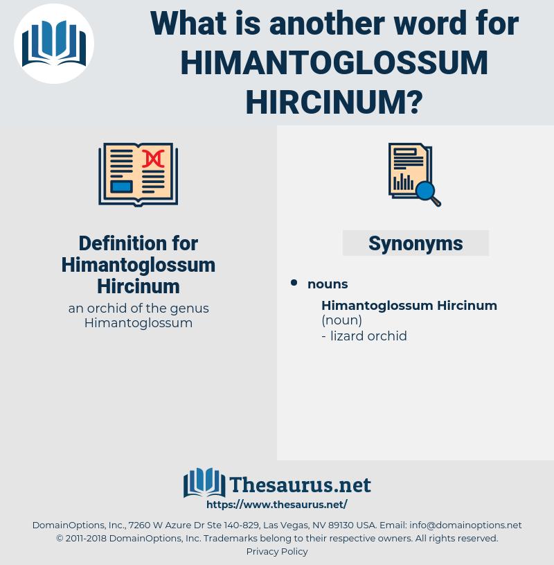 Himantoglossum Hircinum, synonym Himantoglossum Hircinum, another word for Himantoglossum Hircinum, words like Himantoglossum Hircinum, thesaurus Himantoglossum Hircinum
