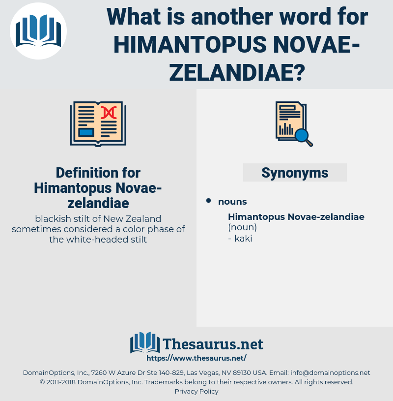 Himantopus Novae-zelandiae, synonym Himantopus Novae-zelandiae, another word for Himantopus Novae-zelandiae, words like Himantopus Novae-zelandiae, thesaurus Himantopus Novae-zelandiae