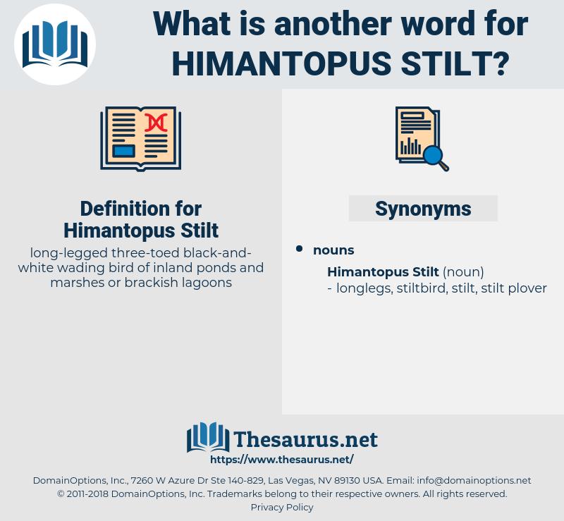 Himantopus Stilt, synonym Himantopus Stilt, another word for Himantopus Stilt, words like Himantopus Stilt, thesaurus Himantopus Stilt