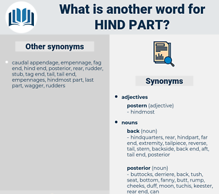 hind part, synonym hind part, another word for hind part, words like hind part, thesaurus hind part