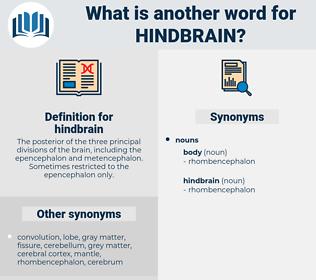 hindbrain, synonym hindbrain, another word for hindbrain, words like hindbrain, thesaurus hindbrain