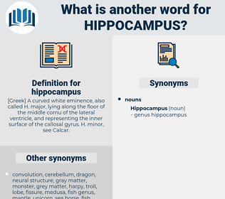 hippocampus, synonym hippocampus, another word for hippocampus, words like hippocampus, thesaurus hippocampus
