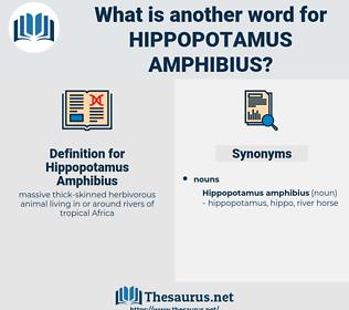 Hippopotamus Amphibius, synonym Hippopotamus Amphibius, another word for Hippopotamus Amphibius, words like Hippopotamus Amphibius, thesaurus Hippopotamus Amphibius