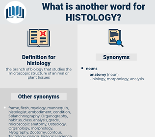 histology, synonym histology, another word for histology, words like histology, thesaurus histology
