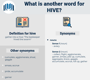 hive, synonym hive, another word for hive, words like hive, thesaurus hive