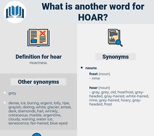 hoar, synonym hoar, another word for hoar, words like hoar, thesaurus hoar