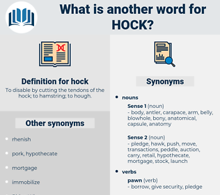 hock, synonym hock, another word for hock, words like hock, thesaurus hock