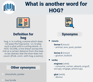 hog, synonym hog, another word for hog, words like hog, thesaurus hog