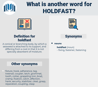 holdfast, synonym holdfast, another word for holdfast, words like holdfast, thesaurus holdfast