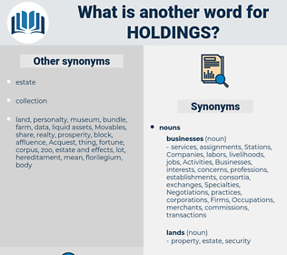 holdings, synonym holdings, another word for holdings, words like holdings, thesaurus holdings