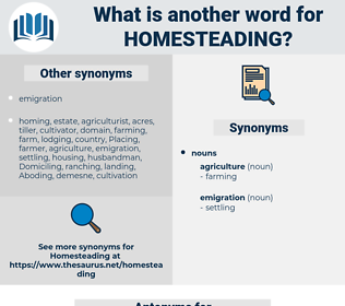 homesteading, synonym homesteading, another word for homesteading, words like homesteading, thesaurus homesteading