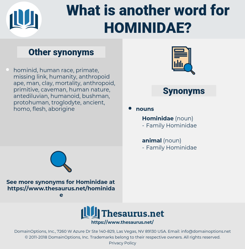 hominidae, synonym hominidae, another word for hominidae, words like hominidae, thesaurus hominidae