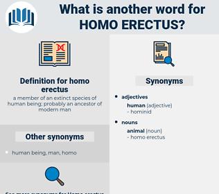 homo erectus, synonym homo erectus, another word for homo erectus, words like homo erectus, thesaurus homo erectus