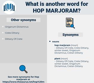 hop marjoram, synonym hop marjoram, another word for hop marjoram, words like hop marjoram, thesaurus hop marjoram