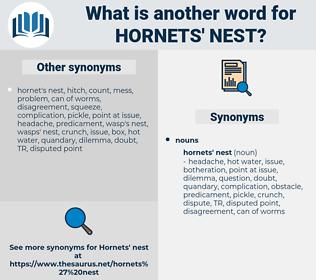 hornets' nest, synonym hornets' nest, another word for hornets' nest, words like hornets' nest, thesaurus hornets' nest