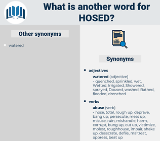 HOSED, synonym HOSED, another word for HOSED, words like HOSED, thesaurus HOSED