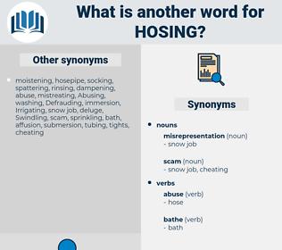hosing, synonym hosing, another word for hosing, words like hosing, thesaurus hosing