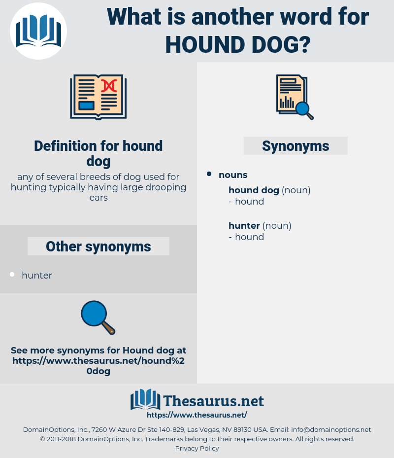 hound dog, synonym hound dog, another word for hound dog, words like hound dog, thesaurus hound dog
