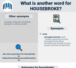 housebroke, synonym housebroke, another word for housebroke, words like housebroke, thesaurus housebroke
