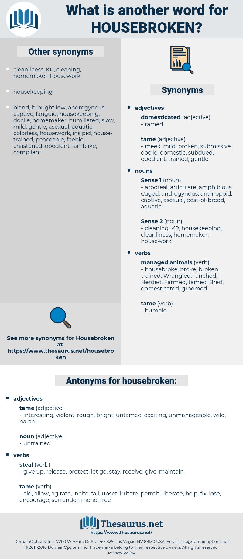 housebroken, synonym housebroken, another word for housebroken, words like housebroken, thesaurus housebroken