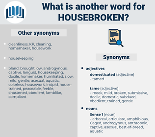 housebroken, synonym housebroken, another word for housebroken, words like housebroken, thesaurus housebroken