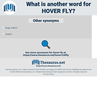 hover fly, synonym hover fly, another word for hover fly, words like hover fly, thesaurus hover fly