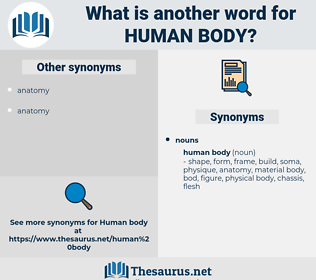 human body, synonym human body, another word for human body, words like human body, thesaurus human body