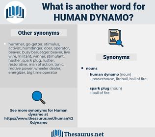 human dynamo, synonym human dynamo, another word for human dynamo, words like human dynamo, thesaurus human dynamo
