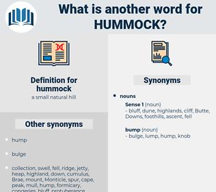 hummock, synonym hummock, another word for hummock, words like hummock, thesaurus hummock
