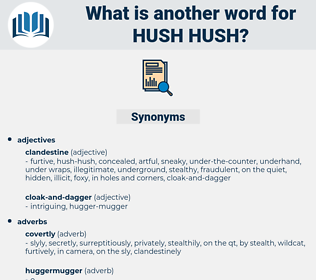 hush-hush, synonym hush-hush, another word for hush-hush, words like hush-hush, thesaurus hush-hush