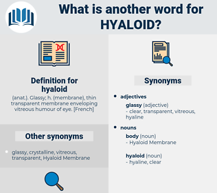 hyaloid, synonym hyaloid, another word for hyaloid, words like hyaloid, thesaurus hyaloid
