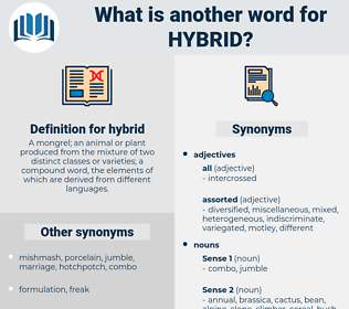 hybrid, synonym hybrid, another word for hybrid, words like hybrid, thesaurus hybrid