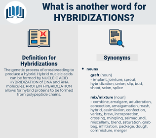 Hybridizations, synonym Hybridizations, another word for Hybridizations, words like Hybridizations, thesaurus Hybridizations