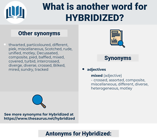 Hybridized, synonym Hybridized, another word for Hybridized, words like Hybridized, thesaurus Hybridized