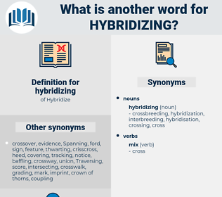 hybridizing, synonym hybridizing, another word for hybridizing, words like hybridizing, thesaurus hybridizing