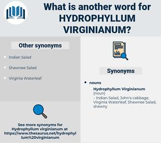 Hydrophyllum Virginianum, synonym Hydrophyllum Virginianum, another word for Hydrophyllum Virginianum, words like Hydrophyllum Virginianum, thesaurus Hydrophyllum Virginianum