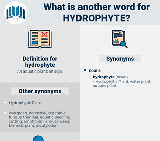 hydrophyte, synonym hydrophyte, another word for hydrophyte, words like hydrophyte, thesaurus hydrophyte