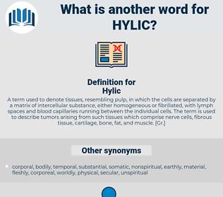 Hylic, synonym Hylic, another word for Hylic, words like Hylic, thesaurus Hylic