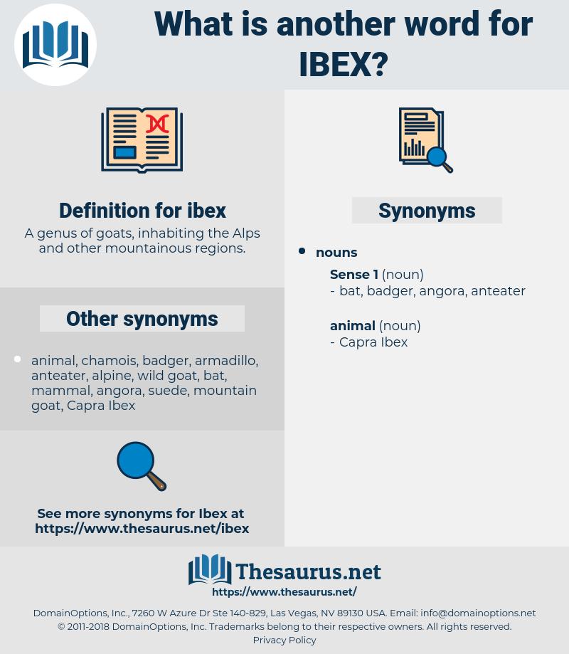 ibex, synonym ibex, another word for ibex, words like ibex, thesaurus ibex