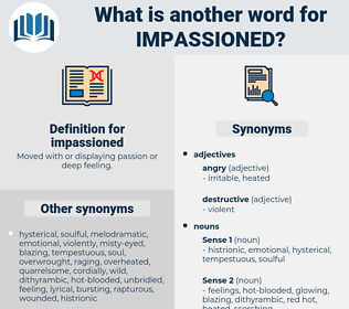 impassioned, synonym impassioned, another word for impassioned, words like impassioned, thesaurus impassioned