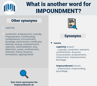 impoundment, synonym impoundment, another word for impoundment, words like impoundment, thesaurus impoundment