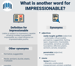 impressionable, synonym impressionable, another word for impressionable, words like impressionable, thesaurus impressionable